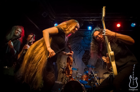 Ally the Fiddle, 24.05.2014, Kiel, Räucherei